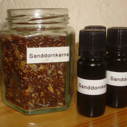 Sanddornkernöl - Kaltgepresst 10ml