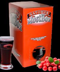 5 Liter Saftbox - 100% Cranberrysaft (Direktsaft)